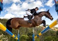 Cavaleiro olímpico realiza clínica de salto em Campos do Jordão