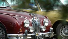 Os carros clássicos estão voltando para Campos do Jordão! No porta malas: solidariedade.