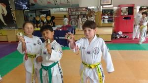 Taekwondo - foto dos meninos