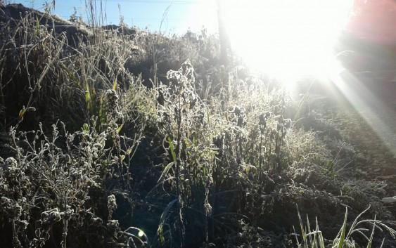 Mais frio em Campos do Jordão estabelece novo recorde do ano