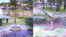 Monitoramento Parque dos Cedros