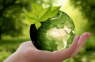 Fundação Lia Maria Aguiar volta seus olhares para sustentabilidade ambiental