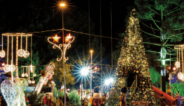 Programação completa do Natal dos Sonhos, que segue encantando em Campos do Jordão!