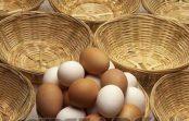 Sobre Campos do Jordão, covid-19 e colocar todos os ovos na mesma cesta