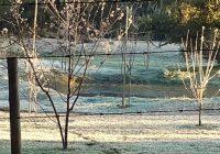 Campos do Jordão tem geada e alerta de frio extremo para os próximos dias