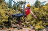Campos do Jordão retoma atividades turísticas em áreas naturais