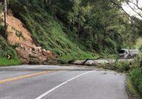 Estrada para Campos do Jordão (SP-123) é liberada após registrar queda de árvore