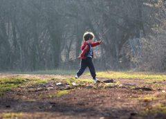 Brincadeiras na natureza estimulam a criatividade e promovem saúde e bem-estar